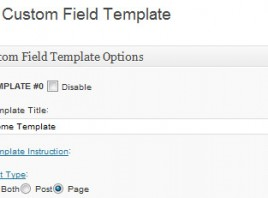 WordPress Custom Fields and Custom Field Template