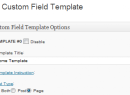 custom-fields-thumbnail