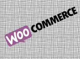 woocommerce online stores